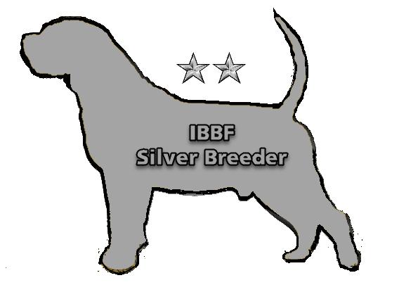 IBBF Silver